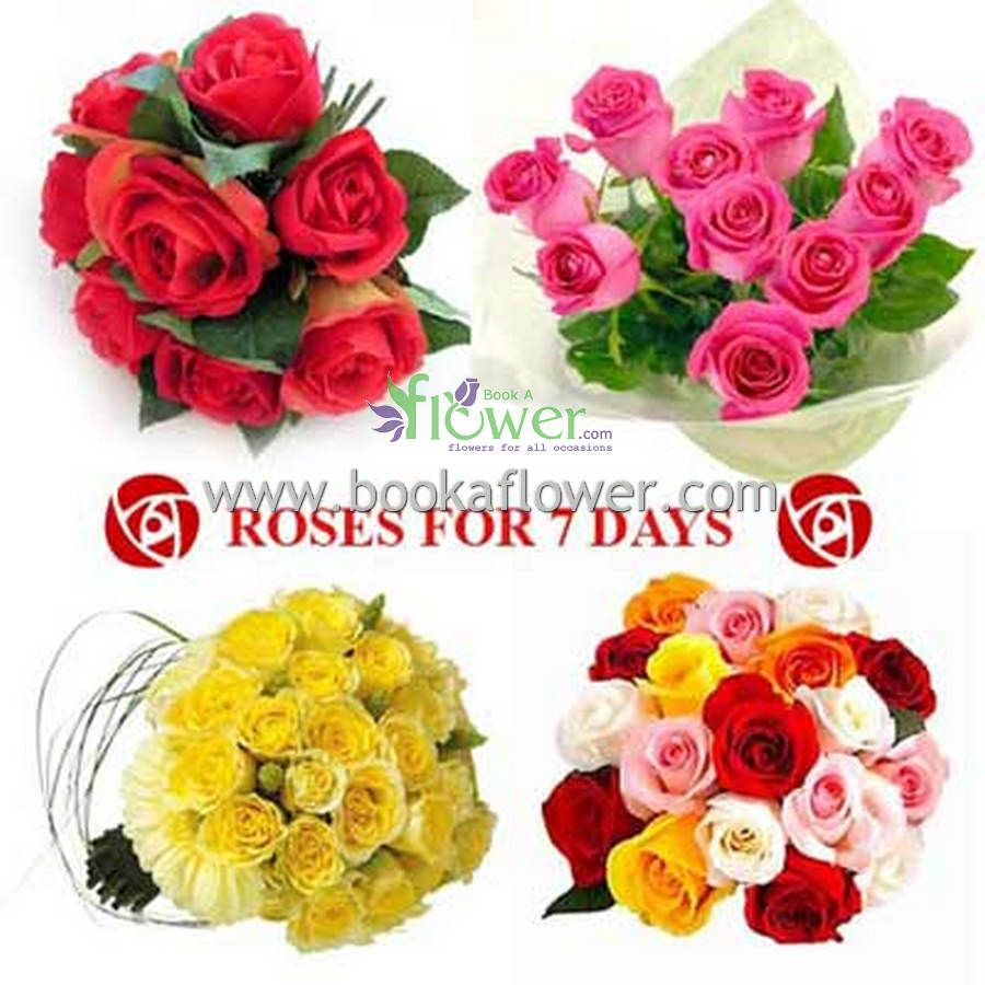 One day is not enough for the gifts place your order httpbit together these stunning blooms make a meaningful gift for friends family members and the one who always makes you smile send flowers in izmirmasajfo