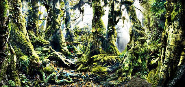 Filmes, Curtas, Documentários: Quantos animais você consegue identificar nesta foto?  Nature Is Speaking - A Floresta Tropical, na voz de Kevin Spacey