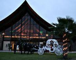Greater Jacksonville Ne Fl Weddings Wedding Guide Florida Wedding Venues Wedding Venues In Virginia Wedding Venues