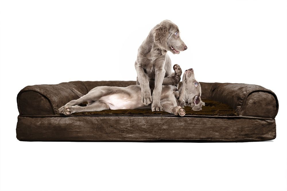 Unique Jumbo Plush Suede Orthopedic Sofa Pet Bed For Dogs And Cats Espresso Furhavenpet Dog Pet Beds Pet Sofa Bed Dog Bed Large
