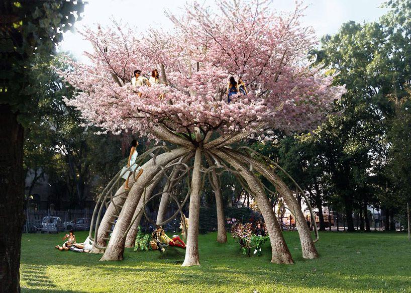 Visiondivision The Patient Gardener Beautiful Tree Garden Japanese Cherry Tree