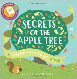 Usborne Shine A Light Books Best Usborne Shine A Light Book Secrets Of The Apple Tree  Homeschool Design Decoration