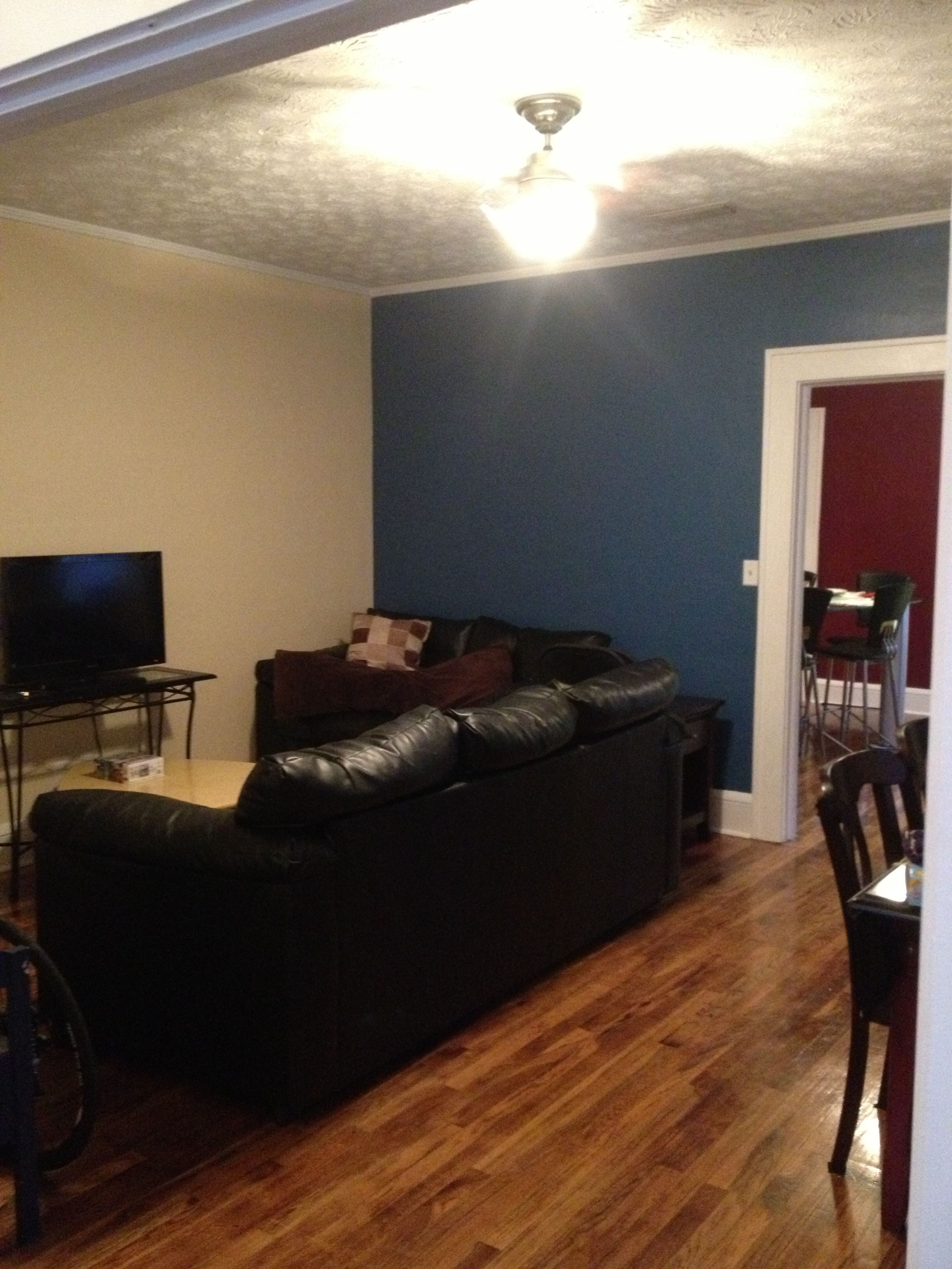 Living Room Colors Color Sherwin William Hgtv Satin Down Pour Blue And Impressive Ivory With White Trim