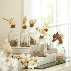 Seashell Glass Bottles (Set of 6)