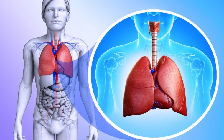 Young CF Patients in UK Receive Machines for At-home Lung ...