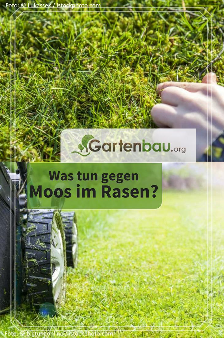Die Gartenfrase Boden Und Beete Kraftesparend Und Effizient Umgraben Hecht Garten
