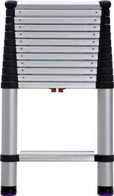 6 Telesteps 1600ep Telescoping Extension Ladder Telescopic Ladder Telesteps Fan Light