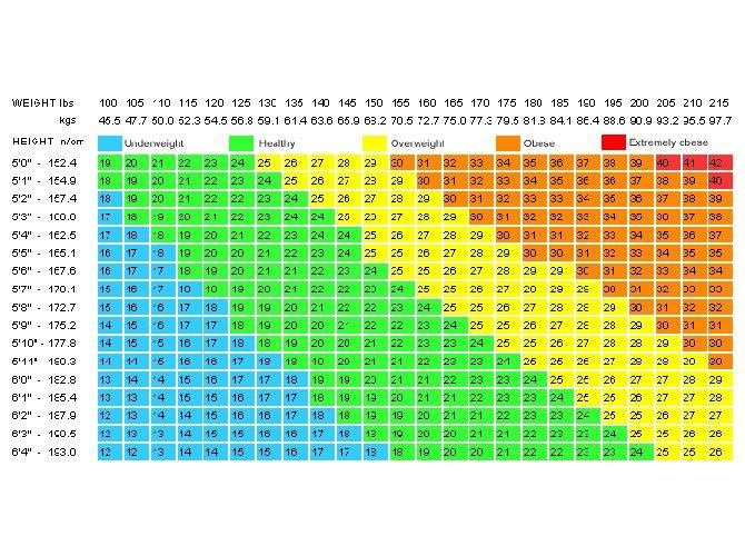 Bmi Calculator Weight Loss And Diet Tips Pinterest Calculator