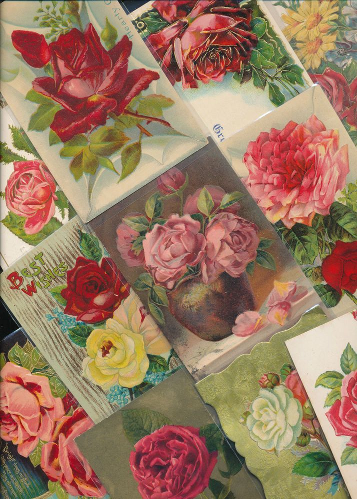 Lovely Lot of 15 ROSES flowers Greetings Vintage Rose Postcards Lot-ppp146 #greetings