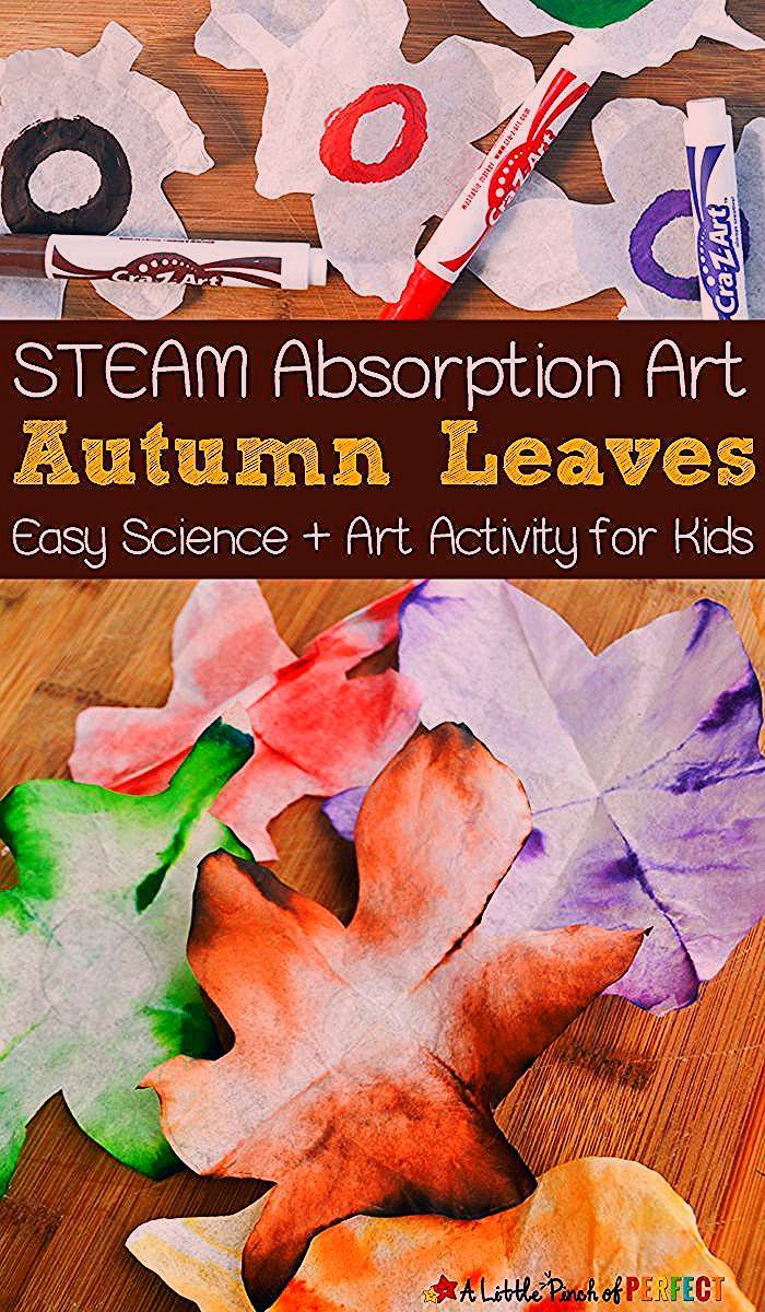 Autumn Leaves STEAM Absorption Art: Kids can watch coffee filters magically change colors as they l