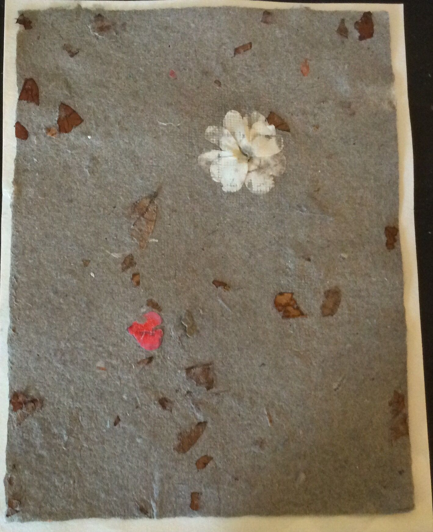 Handmade paper created with dryer lint and egg carton, embedded with flowers.  This paper is still wet and will dry a lighter shade.  Created by Lily DuVeaux.