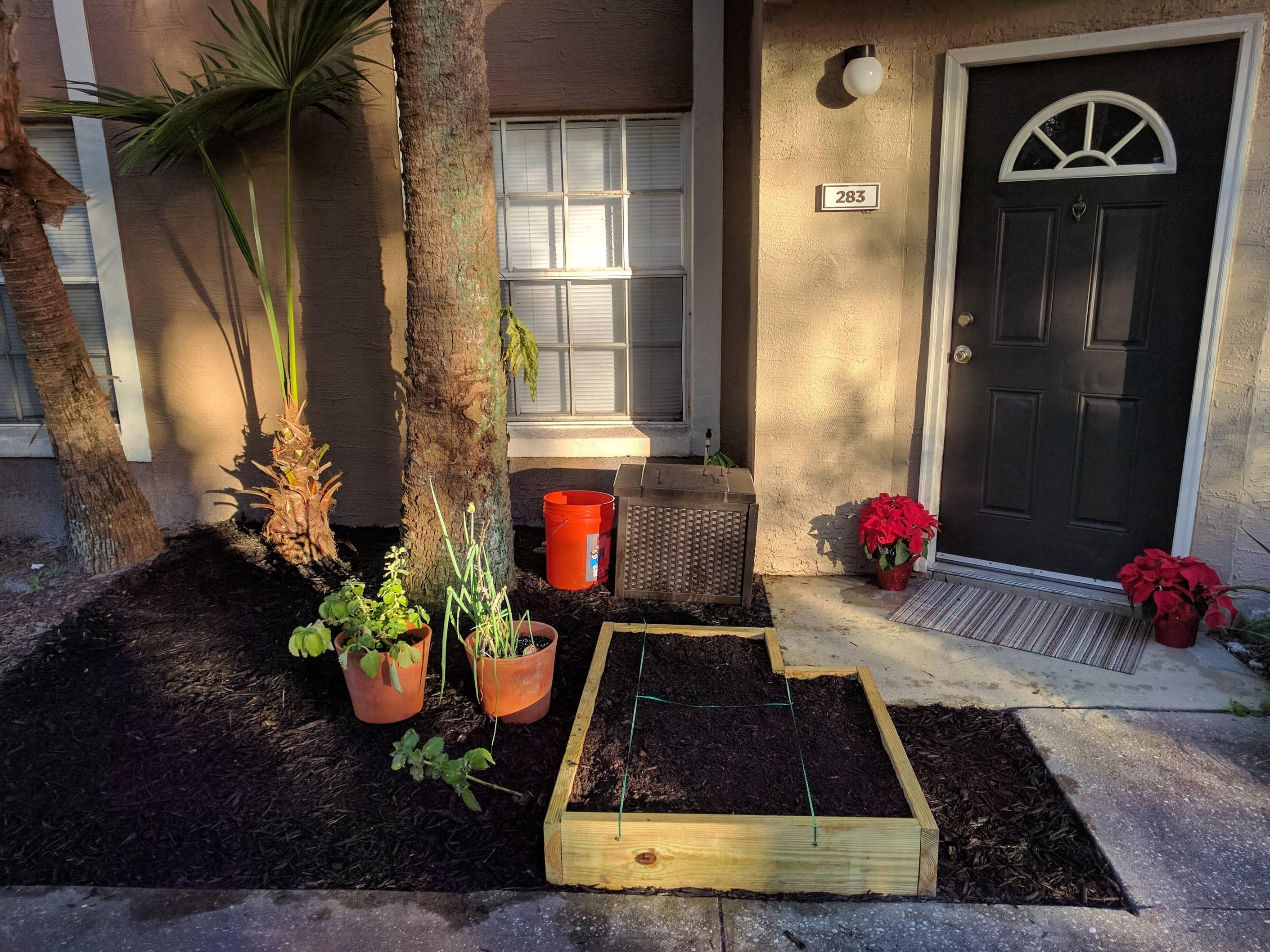 It's about as big as I could make it for an apartment! Starting the year off with dirt on my hands :) #gardening #garden #DIY #home #flowers #roses #nature #landscaping #horticulture