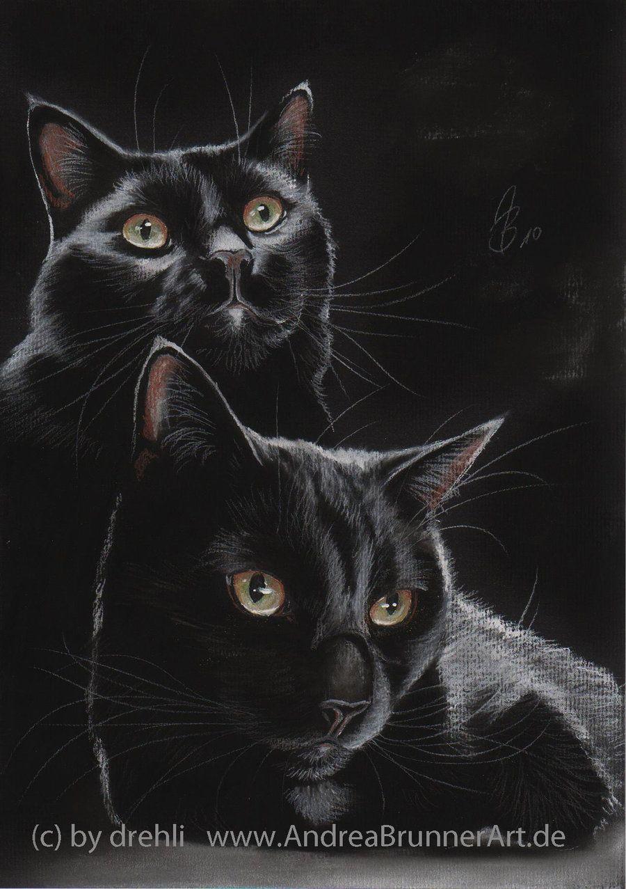 black cat (pastel) by Drehli
