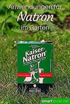 Photo of 6 clevere Anwendungen für Natron im Garten