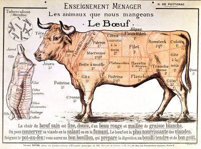beef-diagram-depicting-the-different-cuts-of-meat-posters.jpg ...
