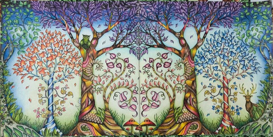 Trees Owl Enchanted Forest Arvores Coruja Floresta Encantada Johanna Basford Adult ColoringColoring BooksJohanna