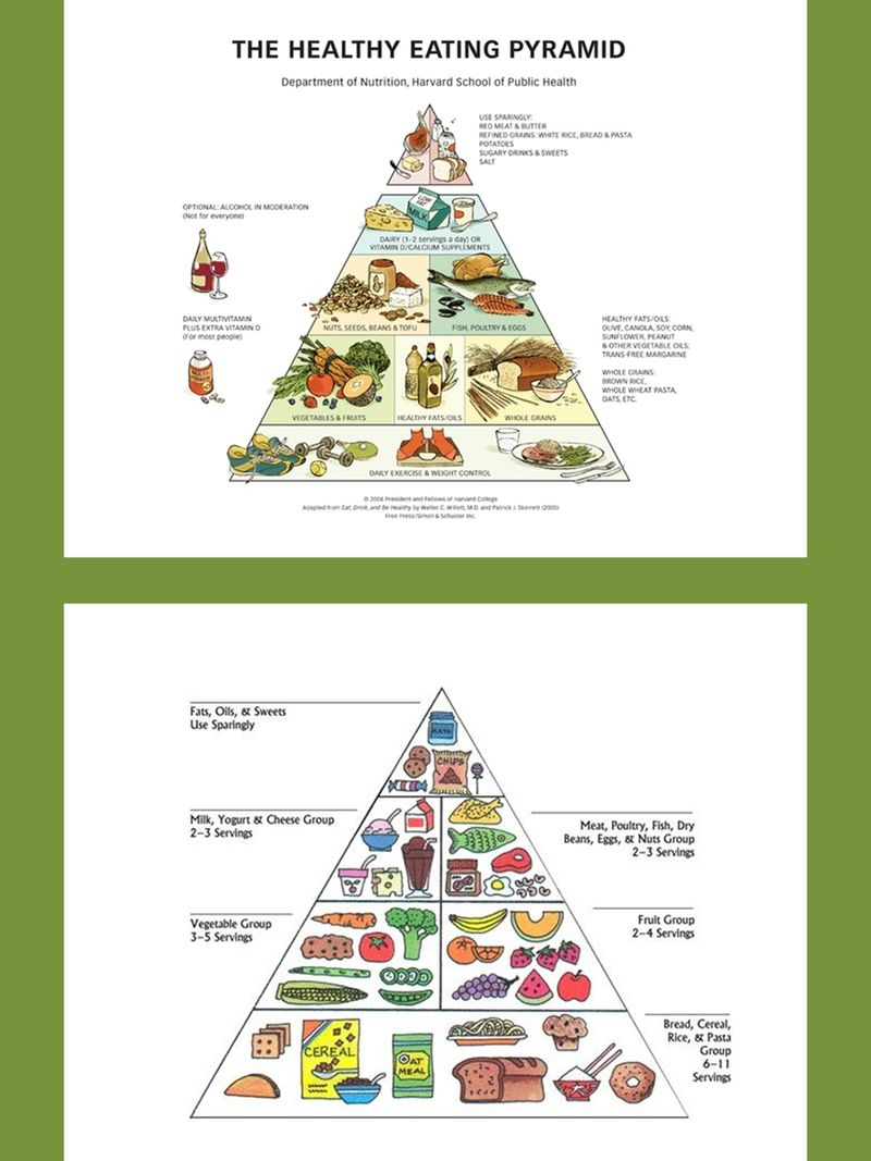 Nutrition And Healthy Eating Charts And Diagrams With Private Label Rights 36 Nutrition And Healthy Eating Diet And Nutrition Healthy Eating Pyramid Nutrition