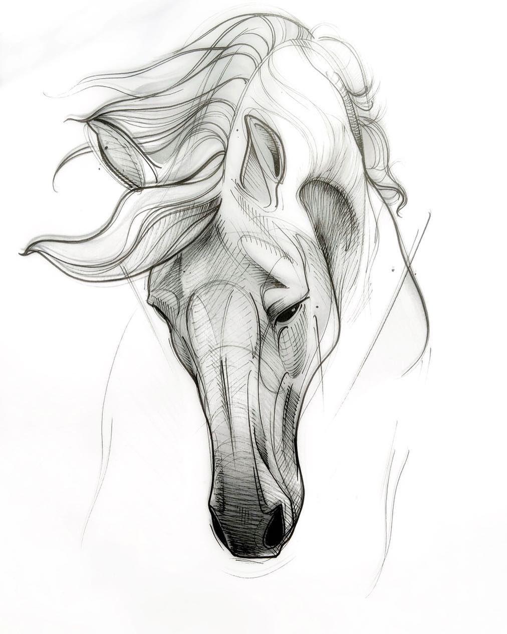 эскизы картинки с лошадьми предлагает много