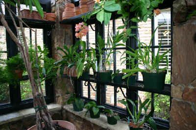 Conservatory and Greenhouse Construction: Claytonhill ...