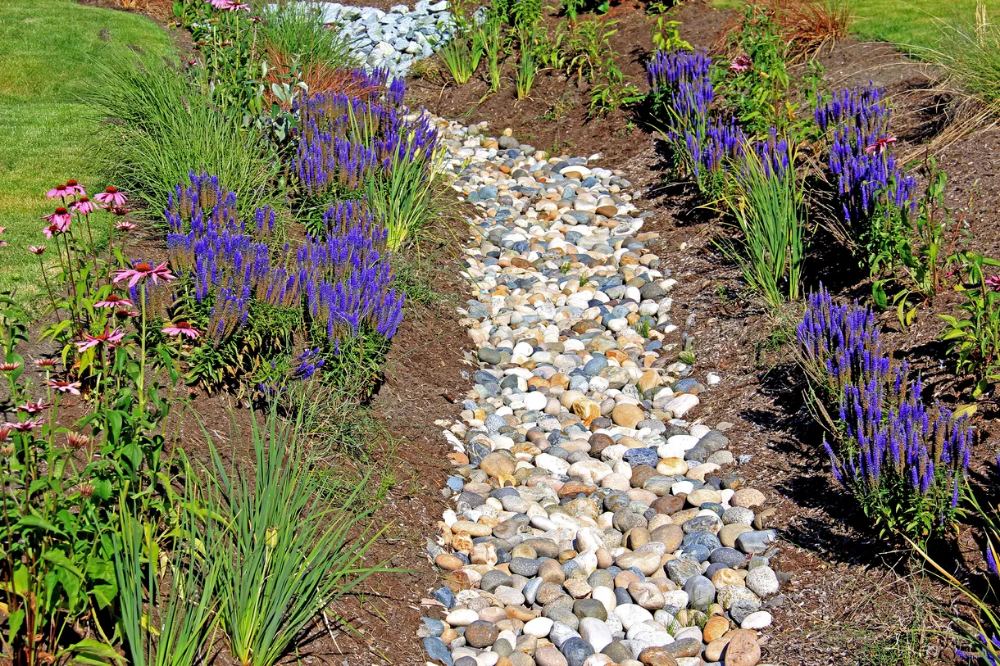 How to Install a French Drain in 2020   French drain ...
