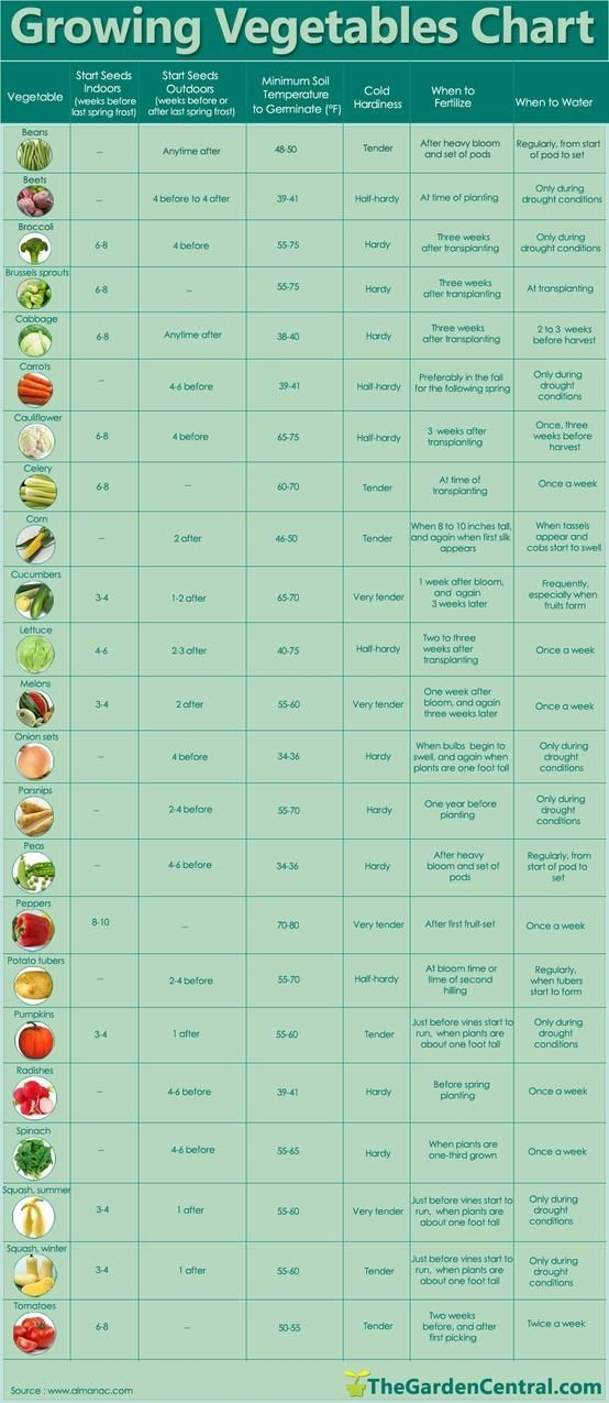 Photo of growing vegetables chart…if I ever get around to making the raised garden on o…