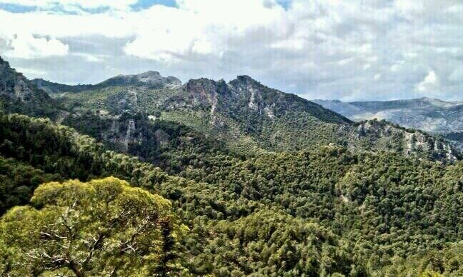 Sierra de las Nieves (Málaga), by @soyfjgonzalez