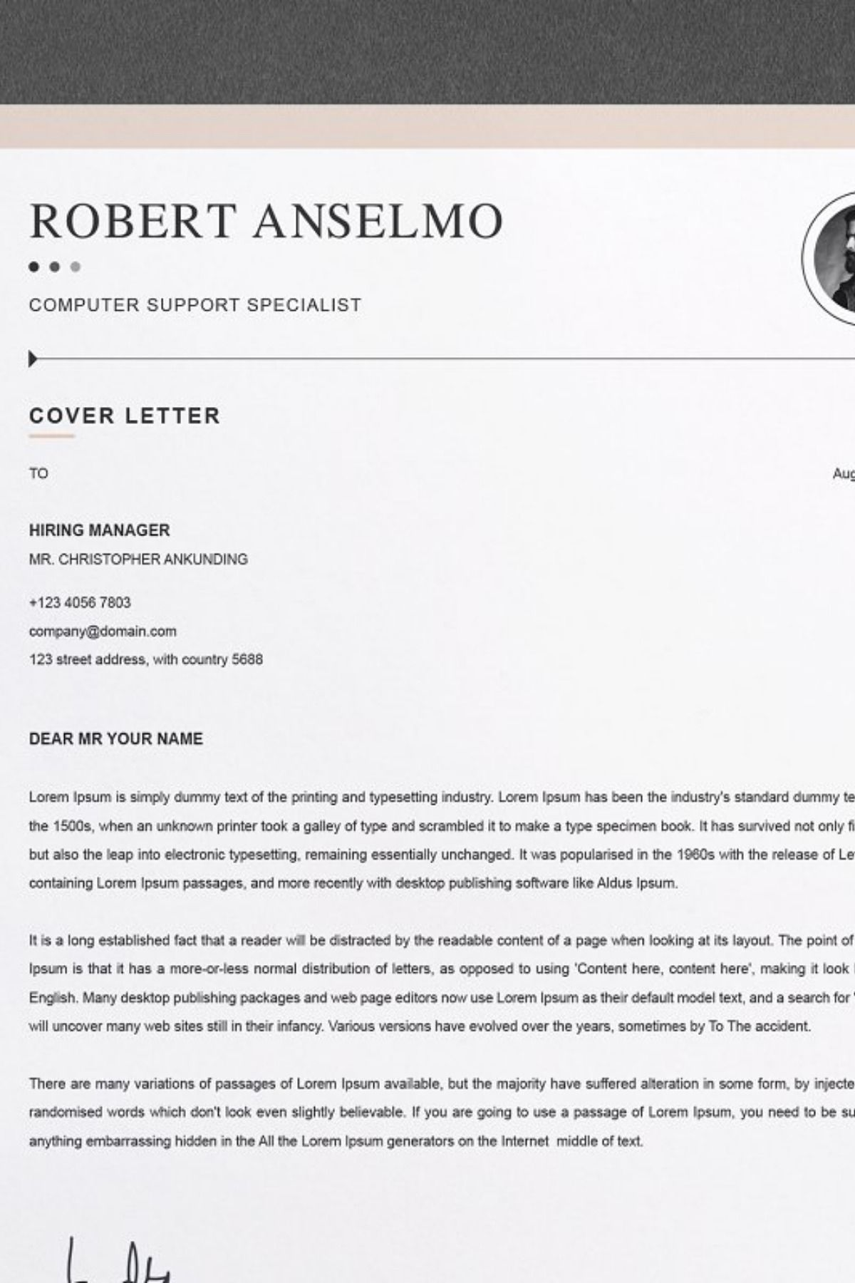 resume template    cv design template