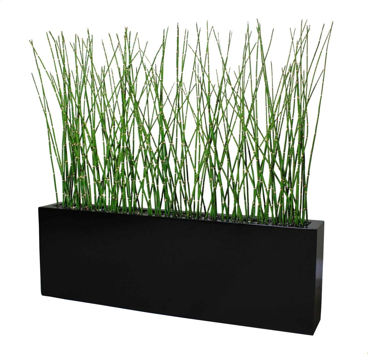 Contemporary planter box fiberglass 54 l x 8 w x 18 h Tall narrow indoor plants