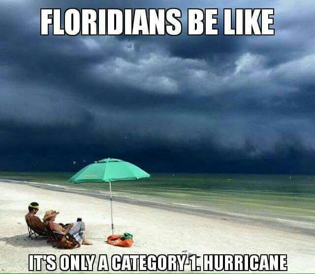 It S Cool We Re All Going Surfing With Images Hurricane Memes