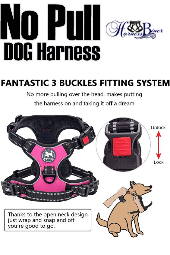 No Pull Dog Harness Upgraded Version No Choke Front Lead Dog