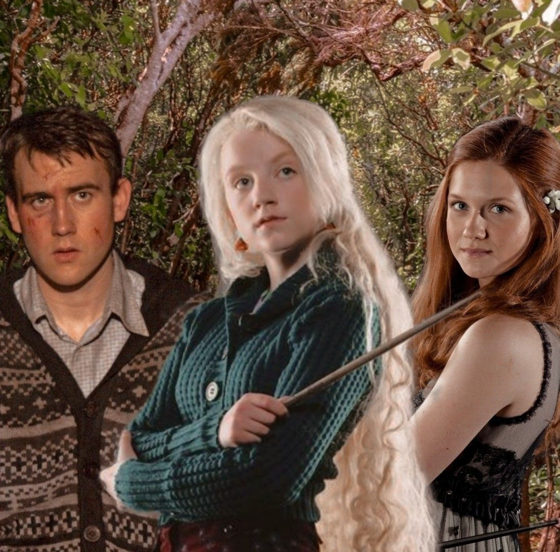 The Silver Trio Ginny Weasley Aesthetic Weasley Aesthetic Harry Potter Aesthetic