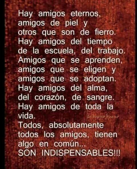 Pin De Marcela Rodriguez En Pensamientos Poemas Versos Frases De Amistad Verdadera Citas De Amistad Verdadera Mensaje De Amistad