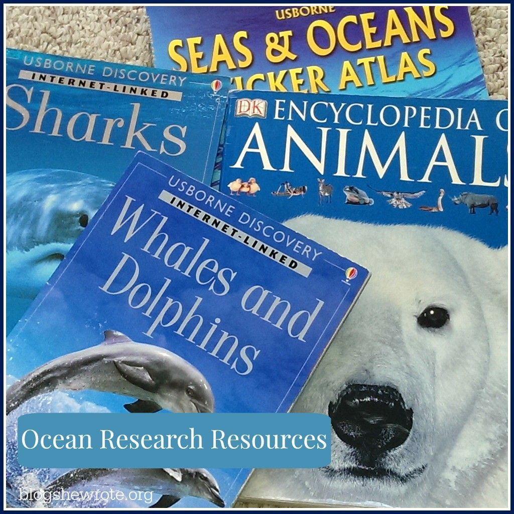 Exploring Oceanography In Your Homeschool
