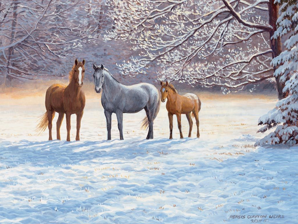 Simple Wallpaper Horse Winter - f45aa6b1a955bb6b075d4ec268b209d8  Pictures_93628.jpg