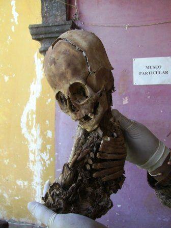 Update: The Proposed 'Alien Skeleton' Found Near Cusco Peru - MessageToEagle.com