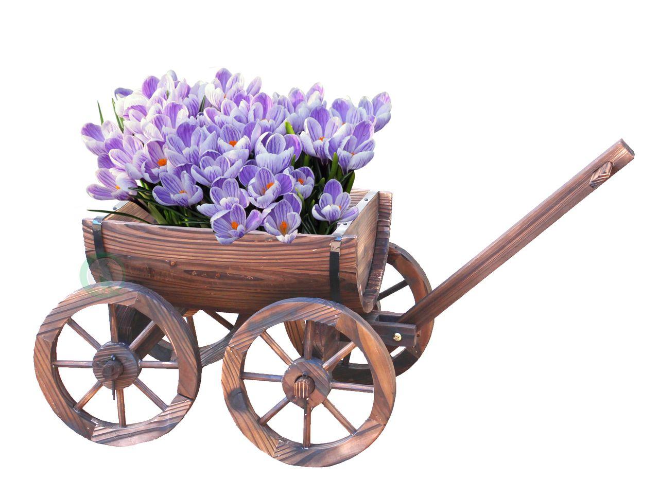 Half Barrel Wagon Planter Wagon planter, Wheelbarrow