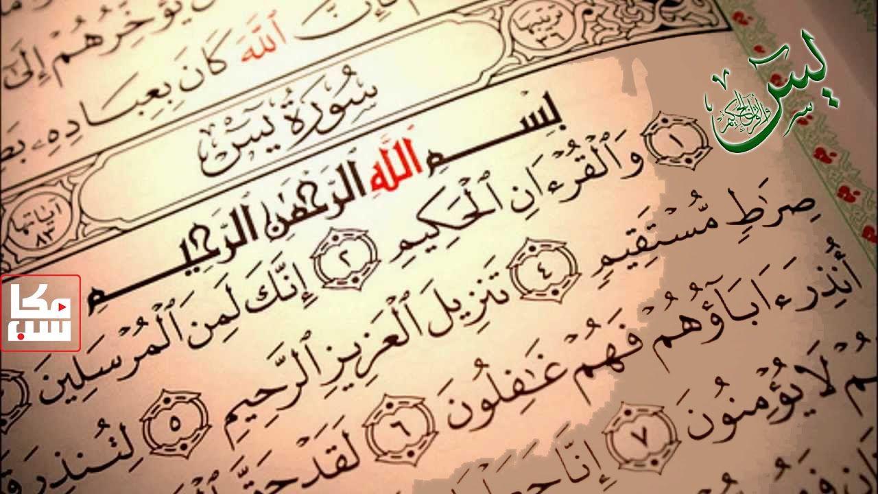 قراءة يس العد ية لقضاء الحاجات مكررة 41 مرة وبصوت 40 قارئ Instagram Posts Holy Quran Arabic Calligraphy