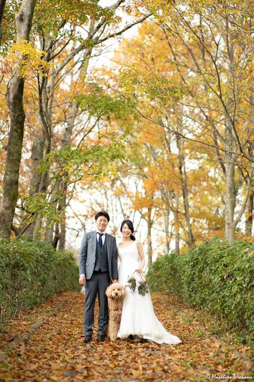 奈良 ペットと前撮り撮影 結婚式の写真撮影 ブライダルフォト ウェディング