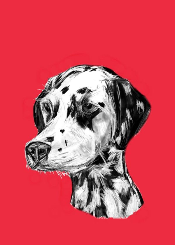 Dalmatian Illustration Red  Dalmatian Illustration Red Gallery quality print on thick 45cm / 32cm metal plate. Each Displate print verified by the Production Master. Signature and hologram added to the back of each plate for added authenticity & collectors value. Magnetic mounting system included.  EUR 39.00  Meer informatie
