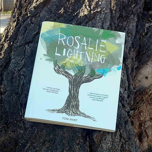 LIGHTNING – WHAT COMES AFTER THE SUDDEN, UNEXPLAINED DEATH OF A TWO-YEAR-OLD TODDLER   Rosalie Lightning  by Tom Hart  St. Martin's Press  2016, 272 pages, 7.8 x 9.6 x 0.8 inches  CLICK FOR MORE PHOTOS AND OUR REVIEW.