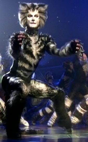 michael gruber as munkustrap in  u0026quot cats u0026quot   filmed in london