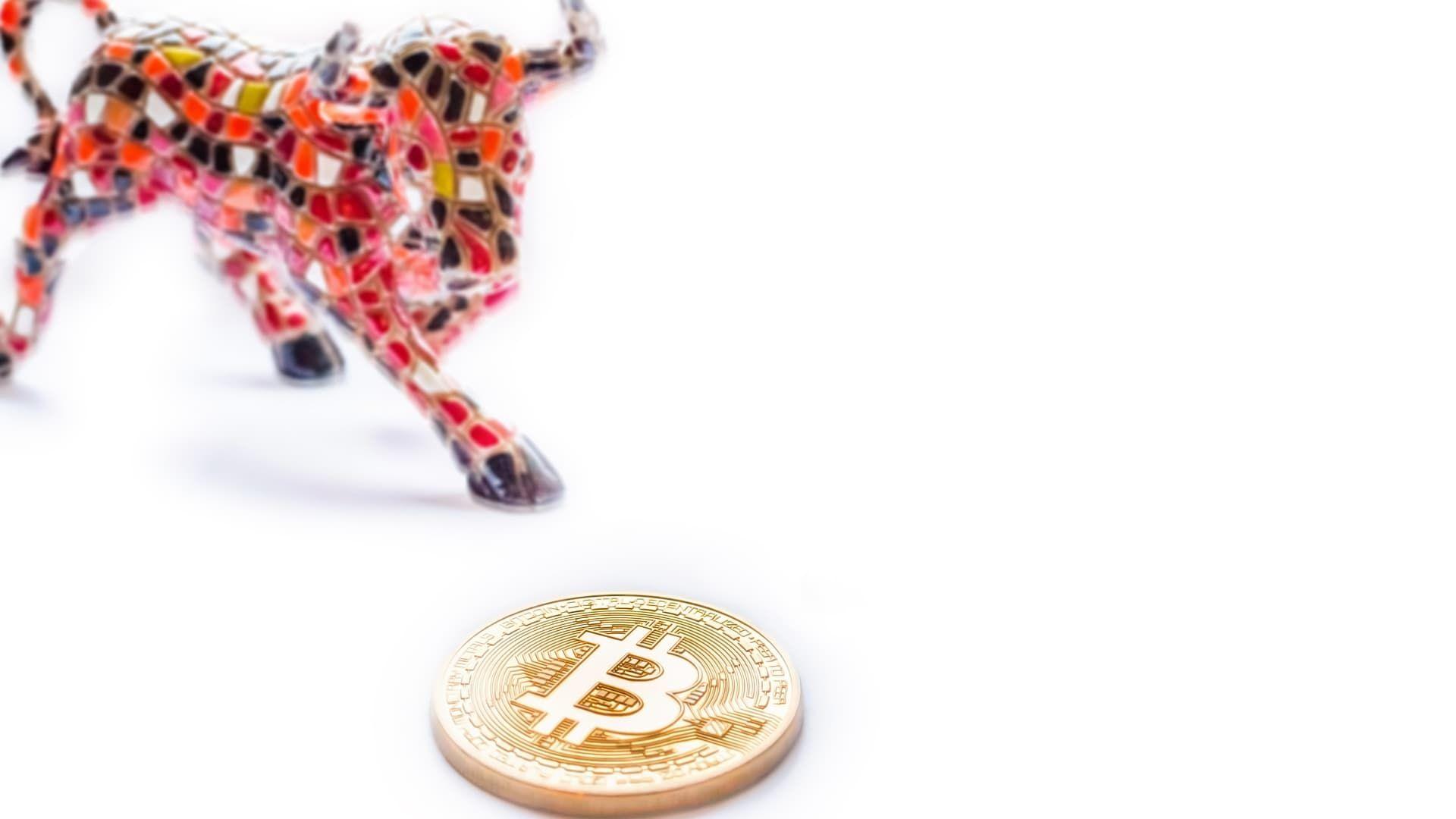 scambio bitcoin ondulazione paga con btc