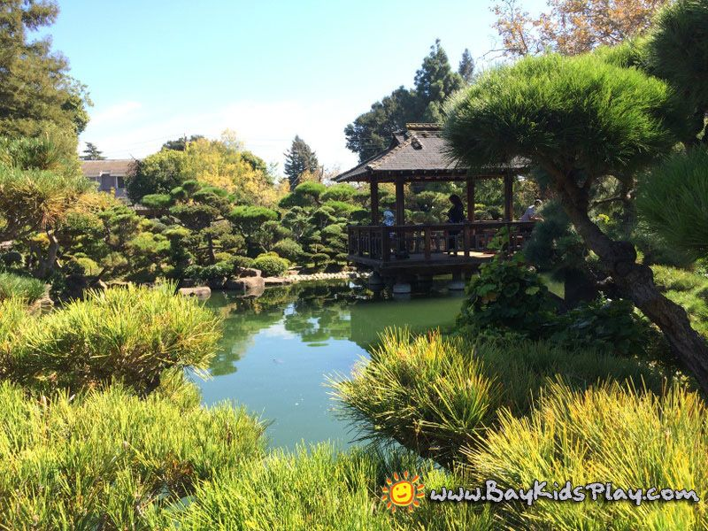 Hayward Japanese Gardens - It is located at the north end of a ...