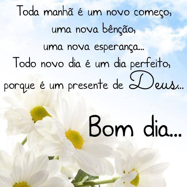 Bom Dia Flores Brancas Frases De Bom Dia Palavras De Esperanca