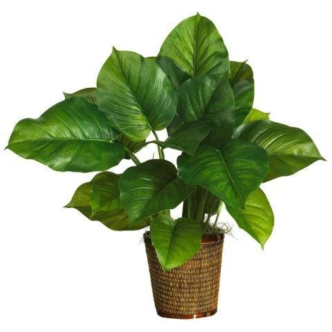 29 inch large leaf philodendron silk plant (real touch)