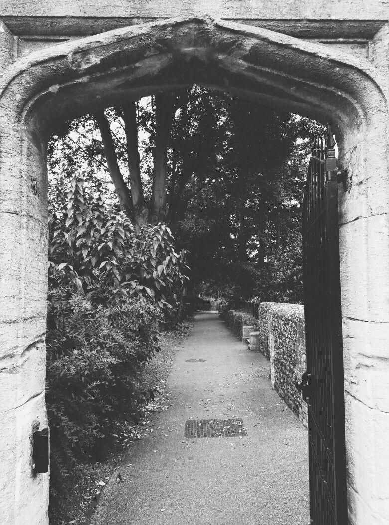 #park #nature #details #pointofview #shadows #canterbury