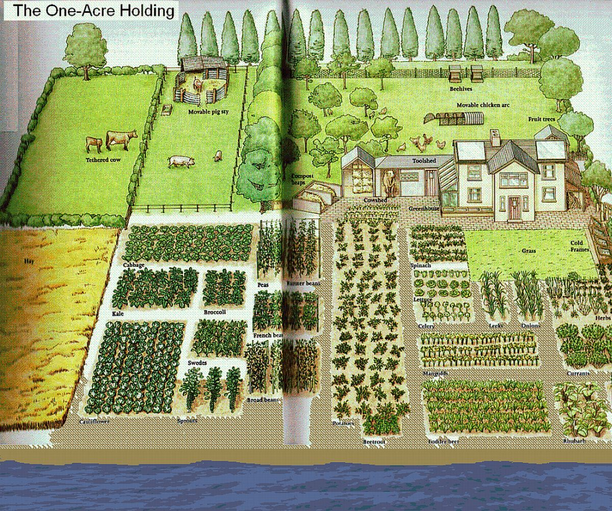 One acre spread how many people homestead layout for Garden design ideas half acre