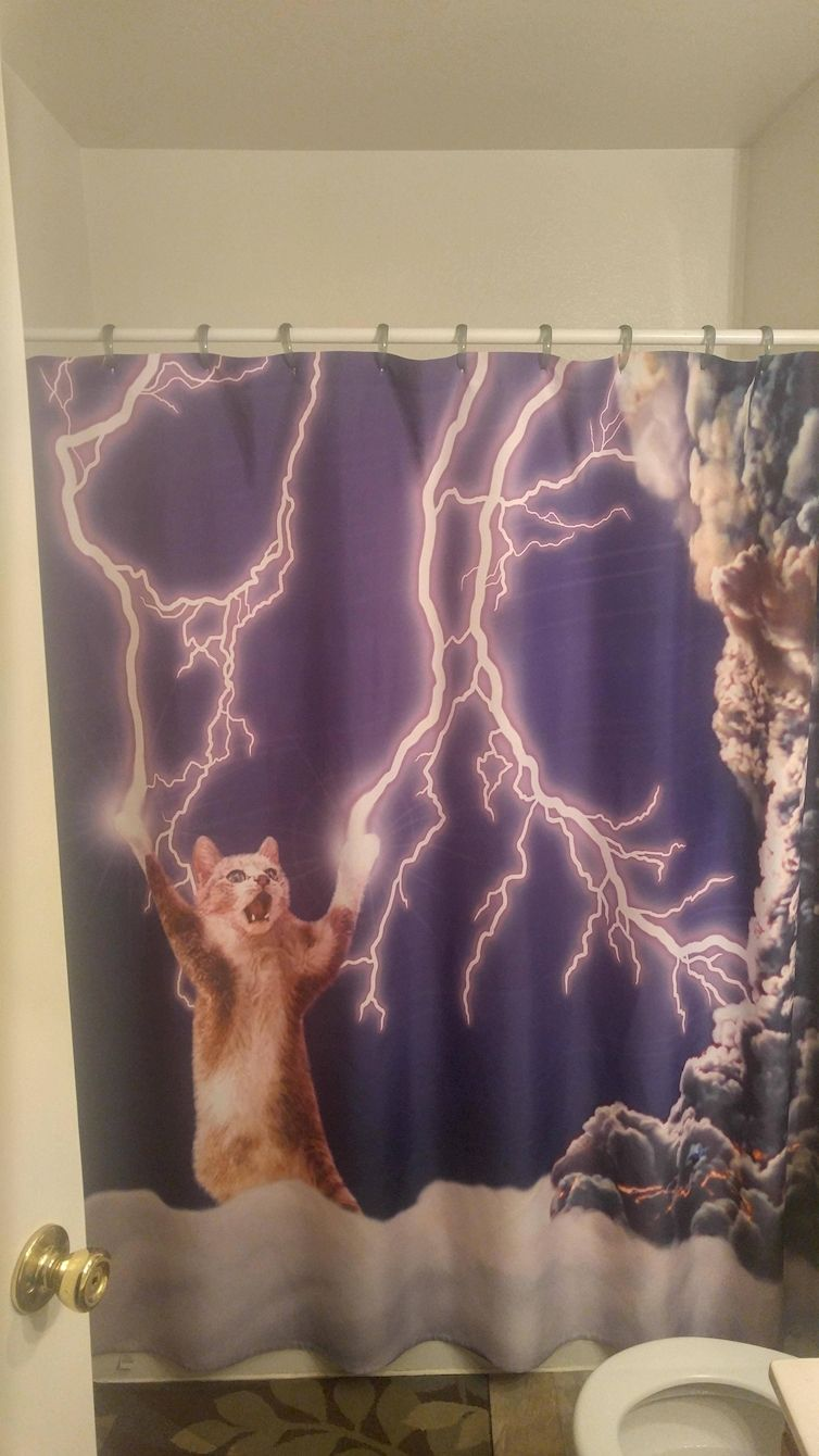 22 Funny Shower Curtains Yeah You Read That Right