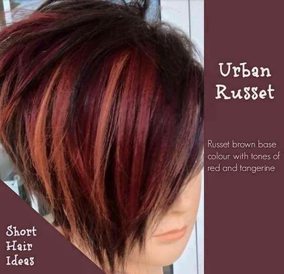 Short Red Hair Styles Short Hair Color Short Red Hair Hair Highlights