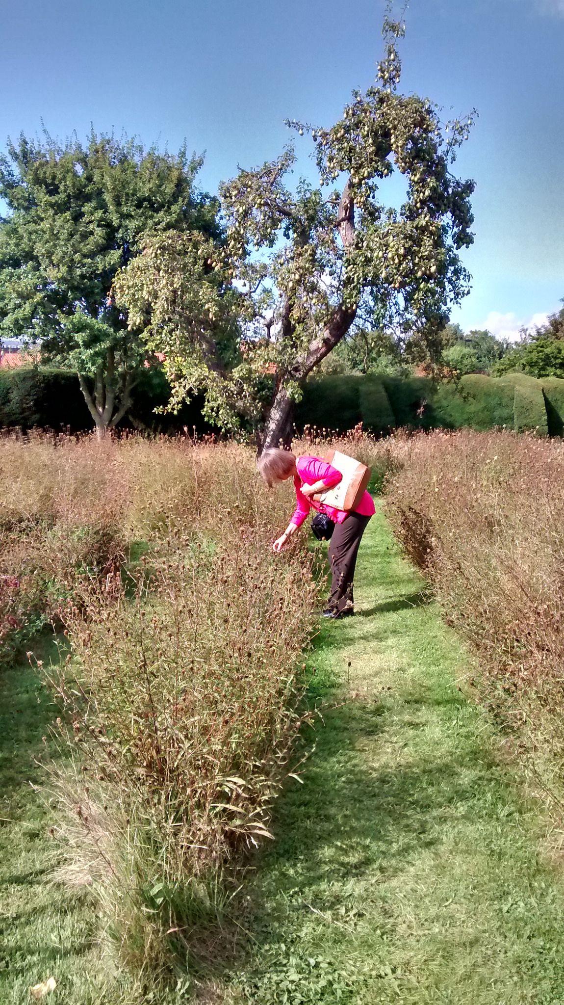 https://flic.kr/p/pdhT7N | Heritage Open Days 2014 | Bishop's Garden